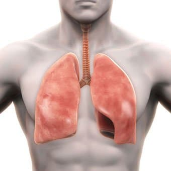 Low vitamin D degrees associated with scarring lung disorder