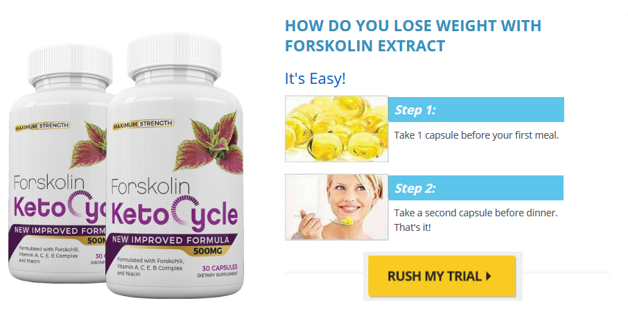 forskolin keto cycle